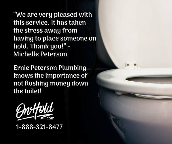 Ernie Peterson Plumbing knows the importance of not flushing money down the toilet!
